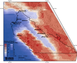 The Salinas Valley is the recipient of more than five hours of fog and low clouds every 24 hours. (USGS)