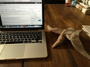 Here's my baby's stuffed pterodactyl, reminding me to stay focused on the important things.