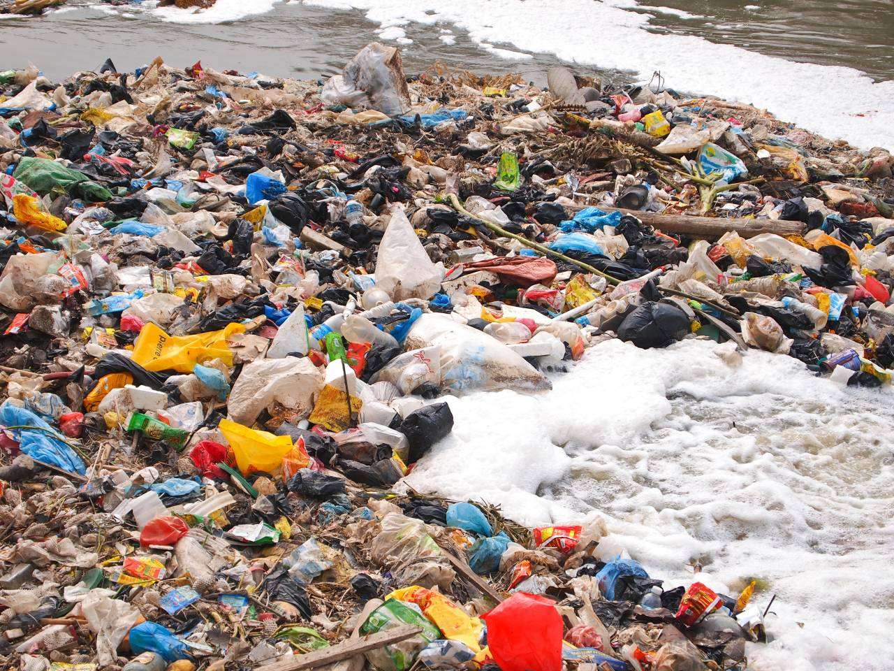 essay on plastic bags are convenient and should not be banned by the government-1